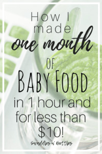 How to Make One Month of Baby Food in One Hour and for Less Than