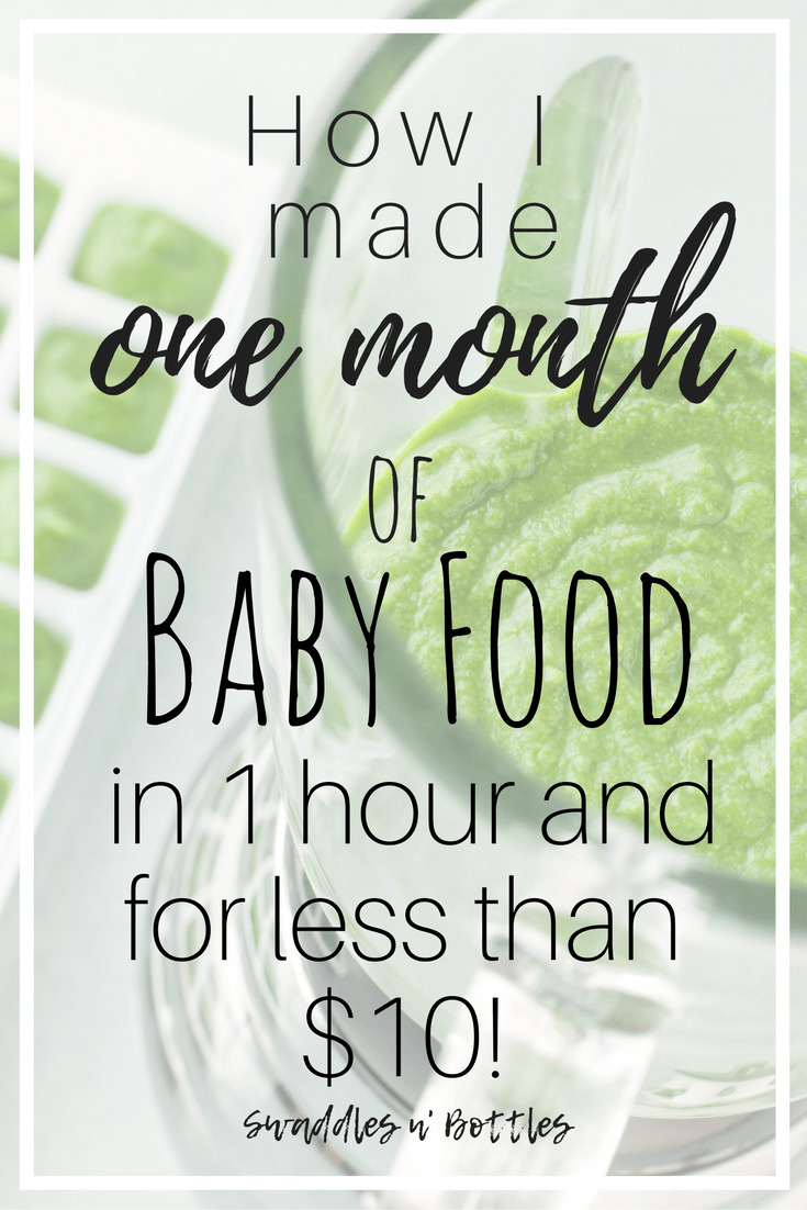 One Months Supply Baby Food- 1 Hour and less than !