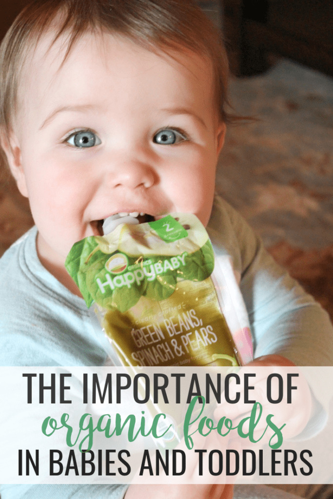 The Importance of Organic Foods for Baby and Toddler