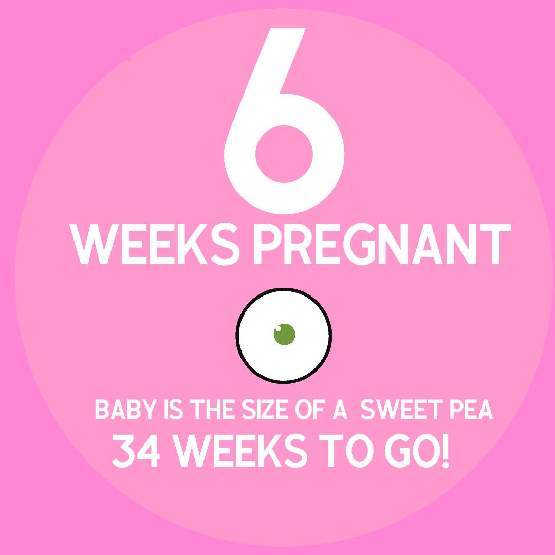 pregnancy symptoms at 6 weeks