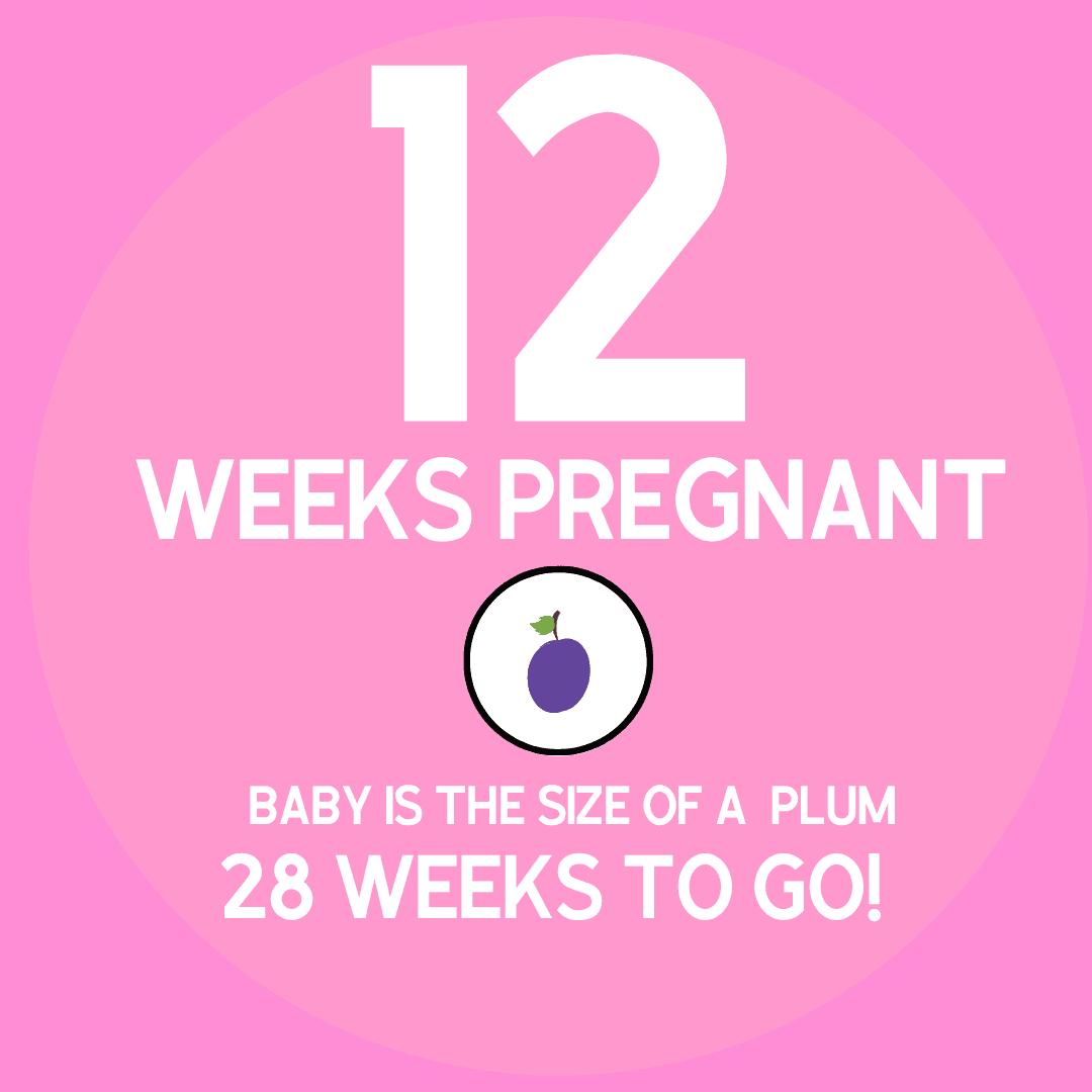 pregnancy symptoms as 12 weeks