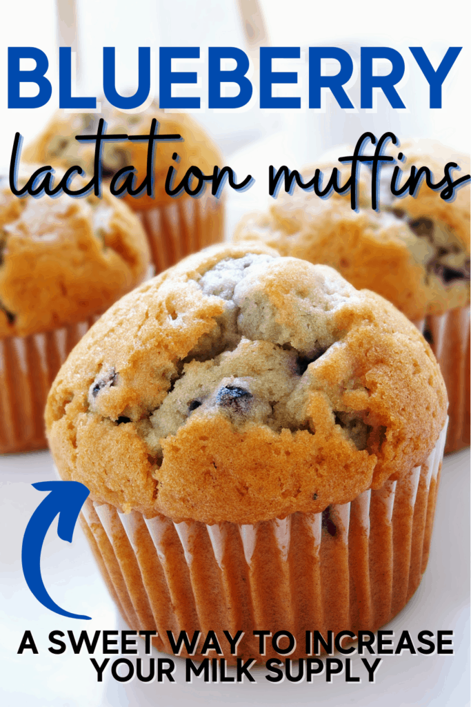 Blueberry Lactation Muffins